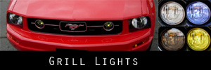 06 Ford Mustang Pony Grill Light Protection Kit